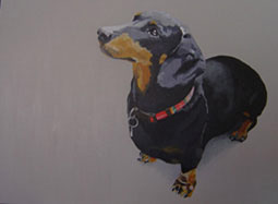 Gill Autie - Dachshund - Acrylic on canvas