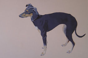 Gill Autie - Black and Tan Lurcher - Acrylic on canvas