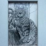 shirley hendley - Artwork my cat