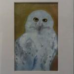 www.sjk-paintings.blogspot.com