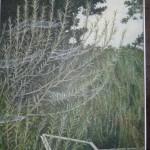 Peter Messer - Webs - Egg Tempura on gesso panel - 20x25cm